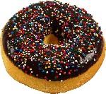 Artificial Doughnuts