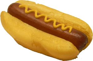 Hot Dog with Mustard fake food USA