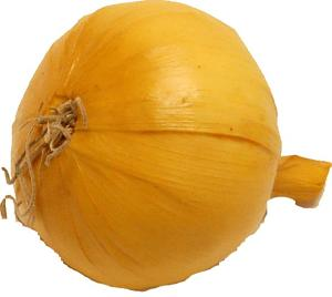 Onion Natural Fake Vegetable