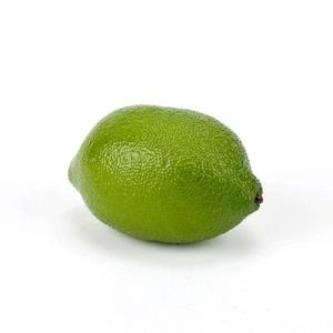Lime Whole Fake Fruit