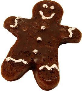 Fake Gingerbread Cookie