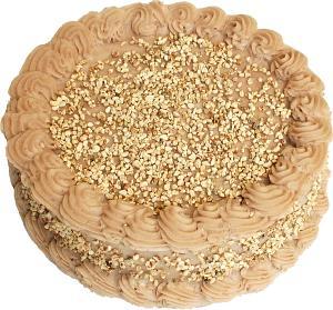 Mocha Fake Cake 9 inch top