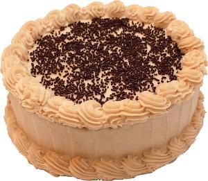 Mocha Chocolate Sprinkle Fake Cake 9 inch