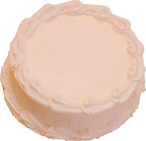 Fake White Cake Blank 9 inch top