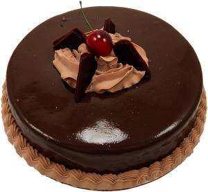 Chocolate Slim Fondant fake cake 9 inch USA