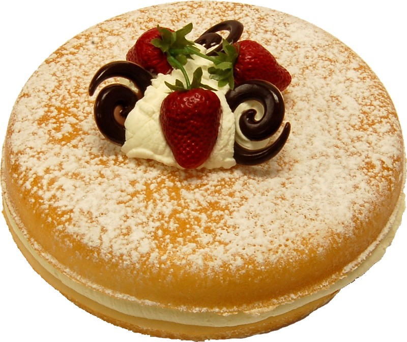 Vanilla two layer sponge fake cake