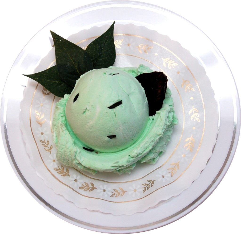 Chocolate Mint Fake Ice Cream on Plate