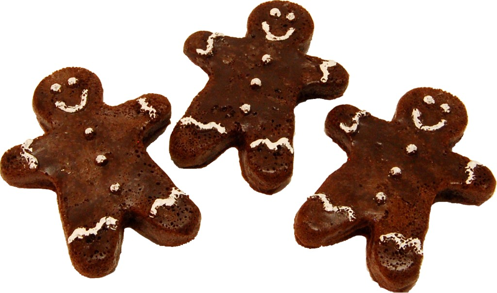 Ginger Bread fake Cookie 3 PACK