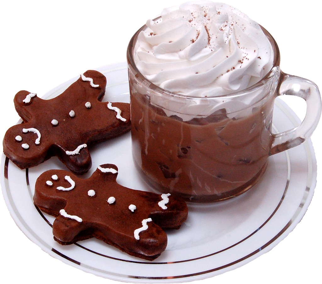 Ice Coffee and Gingerbread Cookies Fake Foods on Plate