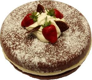 Chocolate two layer sponge fake cake USA