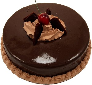 Chocolate Slim Fondant fake cake 9 inch USA