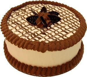 Chocolate Drizzle fake cake 9 inch USA