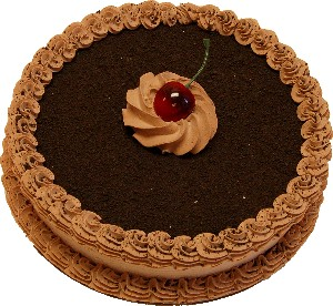 Chocolate Mocha Short Fake Cake 9 inch USA
