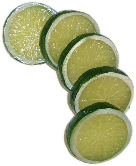 Lime Slice 5 piece fake fruit
