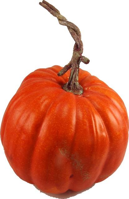 Pumpkin fake fruit