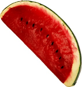 Watermelon fake fruit