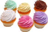 Fake Cupcakes Plain 6 Pack Assortment