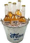 Beers in a Bucket fake drinks USA