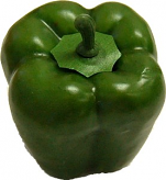 Green Bell Pepper fake vegetable