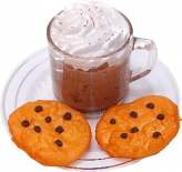Ice Coffee and Chocolate Chip Cookies Fake Foods on Plate