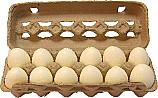 Eggs one Dozen fake food Soft Touch Foam Eggs USA